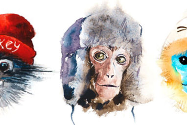 Year of the Monkey: Your 2016 Chinese Horoscope