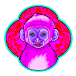 Year of the Monkey AstroTwins