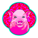 Year of the Pig AstroTwins