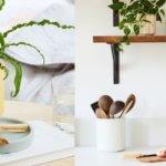 the best plants for your zodiac sign by the astrotwins and the sill